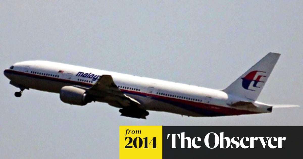Pilots' group president says MH17 shot down after attempt to avoid storms
