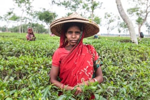 A Bengali tea labourer in Srimangal