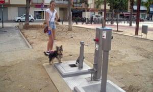 Dog toilet in El Vendrell, Spain