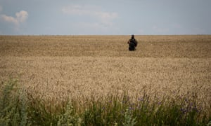 "An armed separatist is seen on a wheat field during the OSCE monitors' visit to MH17 flight crash site in the village of Grabovo, East Ukraine. -- A team of OSCE investigators arrive at the crash site of Malaysian Airlines MH17 in the village of Grabovo. Observers complain of the lack of ""freedom of movement they need to do their job"" in an area heavily guarded by pro-Russian separatists."
