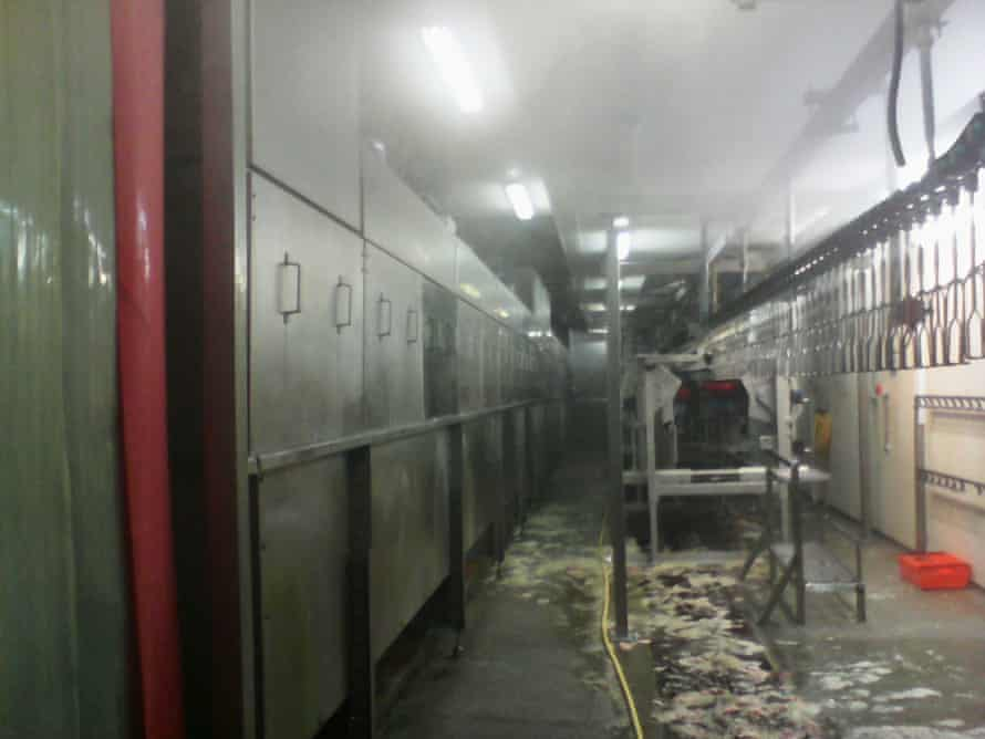 Scald tanks on the left with chicken debris on the floor. Photograph: Guardian