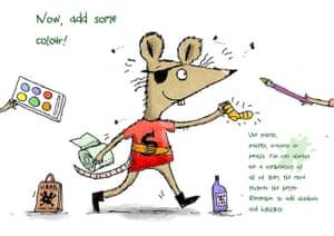 Rat: 11 rat