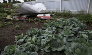 A piece of the crashed Malaysia Airlines Flight 17 lies in a garden in the village of Petropavlivka, Ukraine. mh17