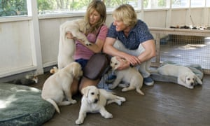 Aniston and Wilson in Marley and Me (for Squirrel to the Nuts)