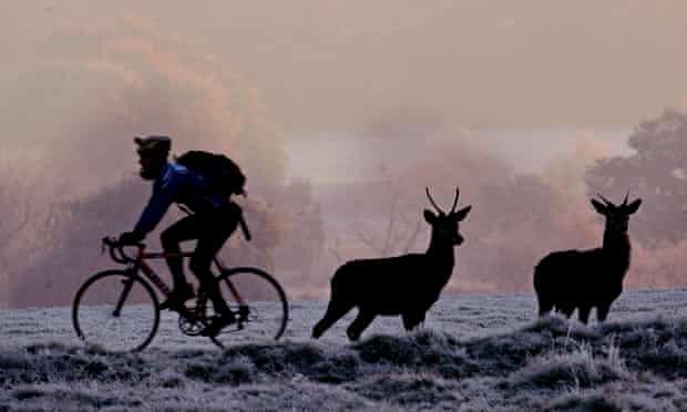 Cycling in Richmond Park, south-west London.