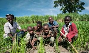 African farmer family