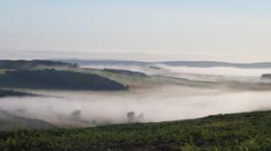 'Mist over Glendale.'