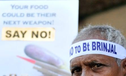 A farmer wears a headband against genetically modified BT Brinjal (eggplant) at a farmer's vegetable market in Hyderabad on January 19, 2010.