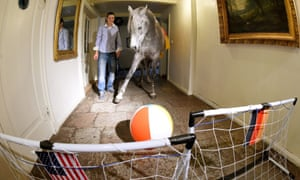 Animals in Germany do seem to be an unpatriotic bunch.  Over in Holt, a three year old Arabian horse 'Nasar' picked team USA ahead of their match against Germany.  However the horse backed the wrong erm horse as Germany won 1-0.