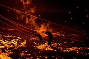 The cormorants are illuminated by by a burning torch on the fishing boat.