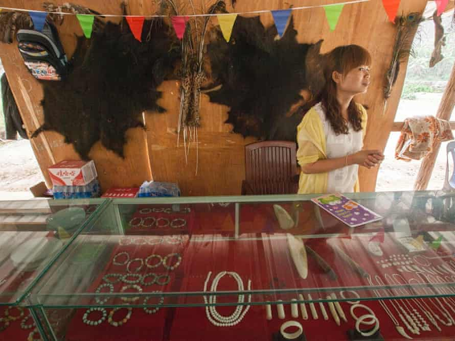 A woman is seen selling ivory products with two bear skins flanking a wild cat skin behind her on the wall, at an exotic wildlife restaurant for Chinese tourists in the town of MongLa, Shan State Special Region Four, Burma, 04 April 2014.