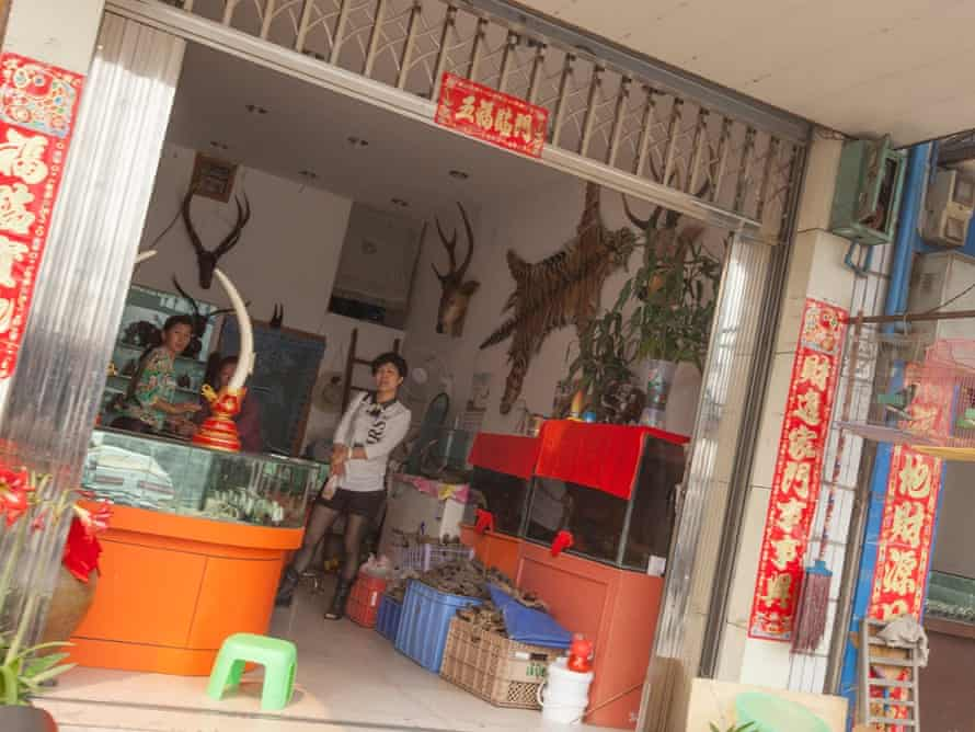 A shop selling illegal wildlife products such as ivory and tiger skins is seen in the town of MongLa, Shan State Special Region Four, Burma, 04 April 2014.  The tiger skin on the wall of the shop was retailing for 50,000 RMB (   4,800) a small fraction of what it could sell for on the black market over the border in China.
