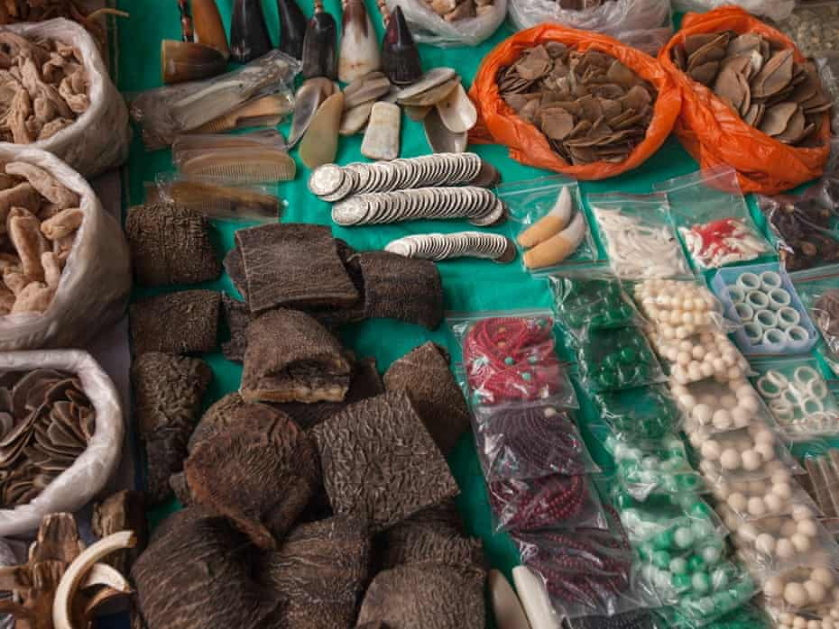Illegal wildlife products are seen for sale at a covered market in the town of MongLa, Shan State Special Region Four, Burma, 04 April 2014.