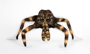 Model Lowri Thomas poses after her tarantula transformation