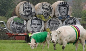 Cows, draped in the colours of the Tour de France cycling leaders jerseys, graze in a field near rolls of hay with the portraits of former champions along the route of the fifth stage of the Tour de France