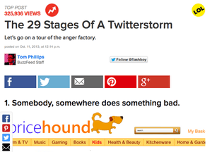 Screenshot of BuzzFeed's article 'The 29 Stages Of A Twitterstorm'
