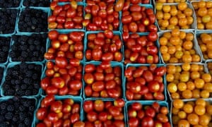 Tomatoes are displayed for sale