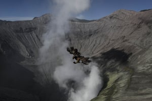 A bird flies over the crater of mount Bromo after being thrown in by worshippers
