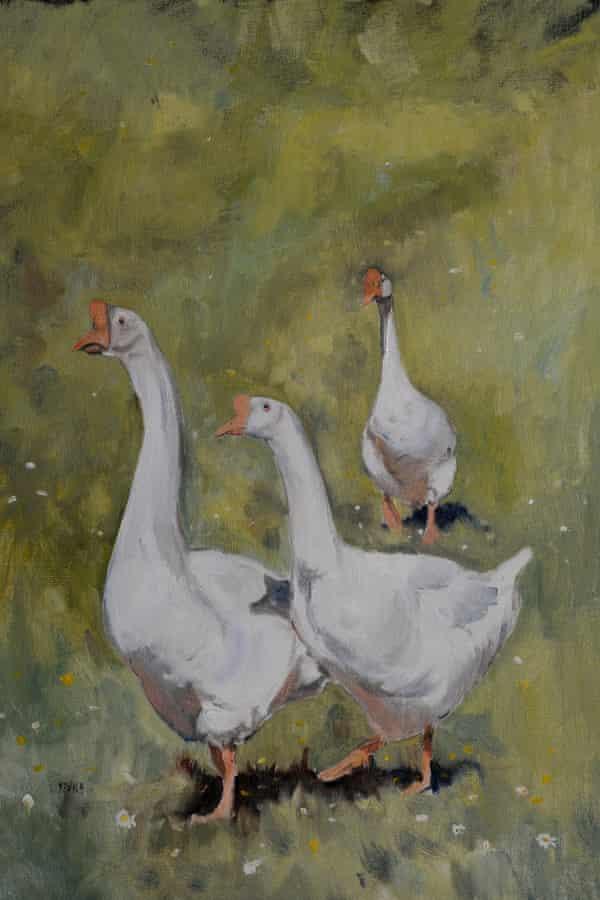 Farm Geese Study by Kieron Williamson, 2014.