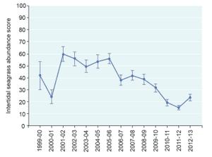 Seagrass graph