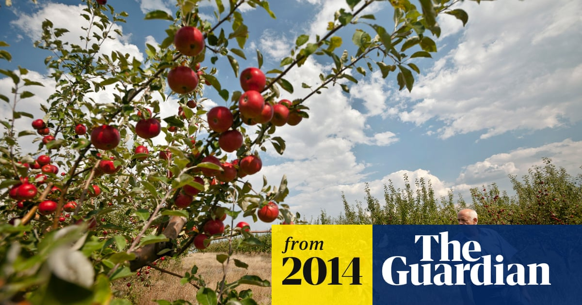 Moldova fights back against Russia's food bans | World news | The