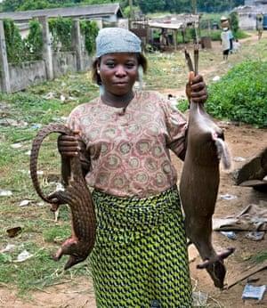 Bushmeat for sale in Nigeria
