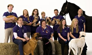 Vet students at the Royal Veterinary College