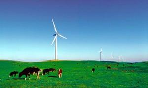 Pacific Hydro Codrington Wind Farm in south western Victoria