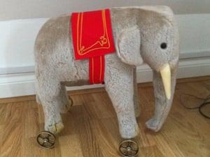 Fernando the elephant, bought by Tim Jonze, on drunken night.