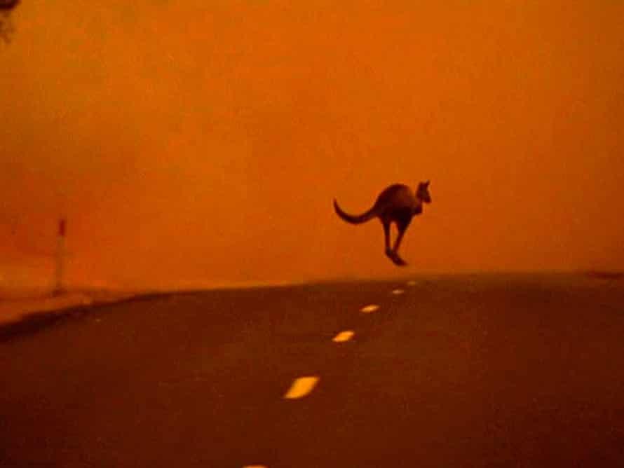 Bushfire in south-eastern Victoria