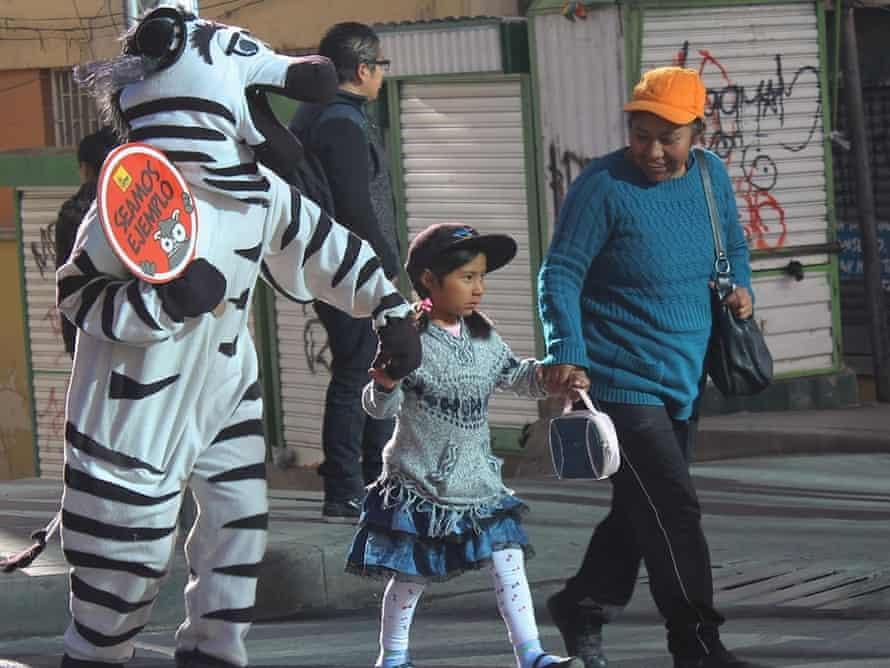 Zebras of La Paz