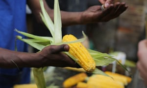 A stall holder sells sweetcorn