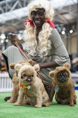 A contestant and her dogs are dressed up as Goldilocks and the 3 bears.