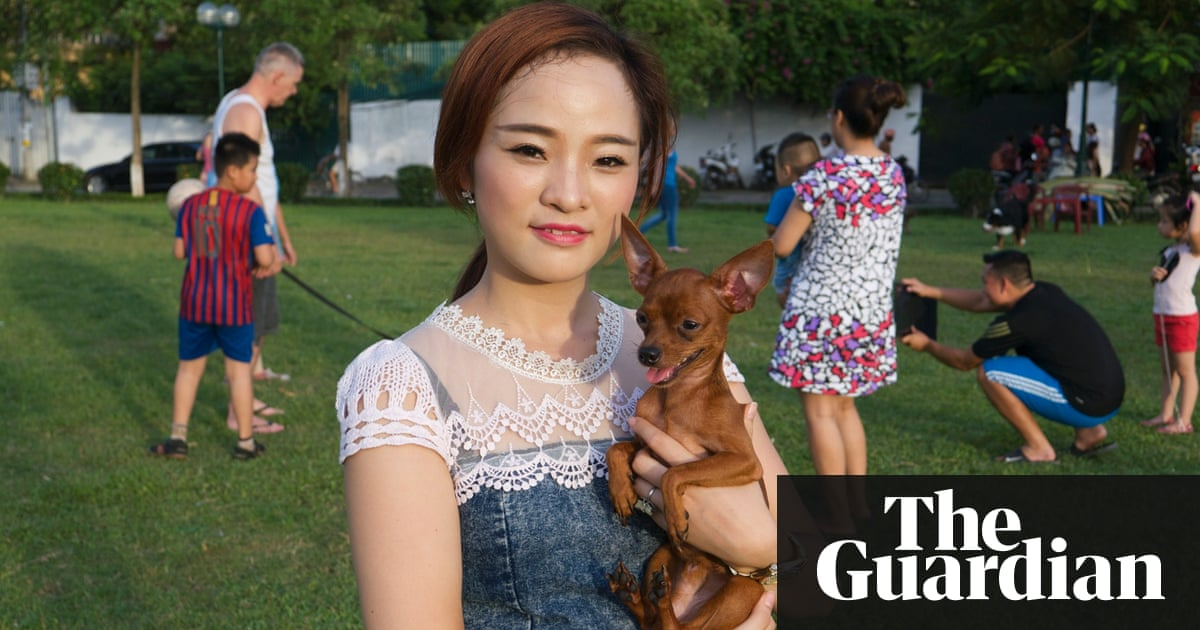 In Vietnam, thieves cash in on growing emotional value of pet dogs | World  news | The Guardian