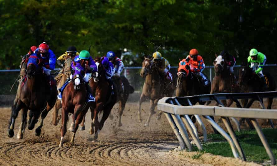 The 2014 Preakness Stakes