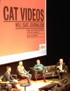 Cat videos session, FODi