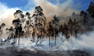 Forest fires in Galicia, Spain, August 2006