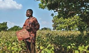 Nicolas Agbigonon farming pioneer cotton