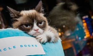 Grumpy Cat tries to out stare the press attending the launch