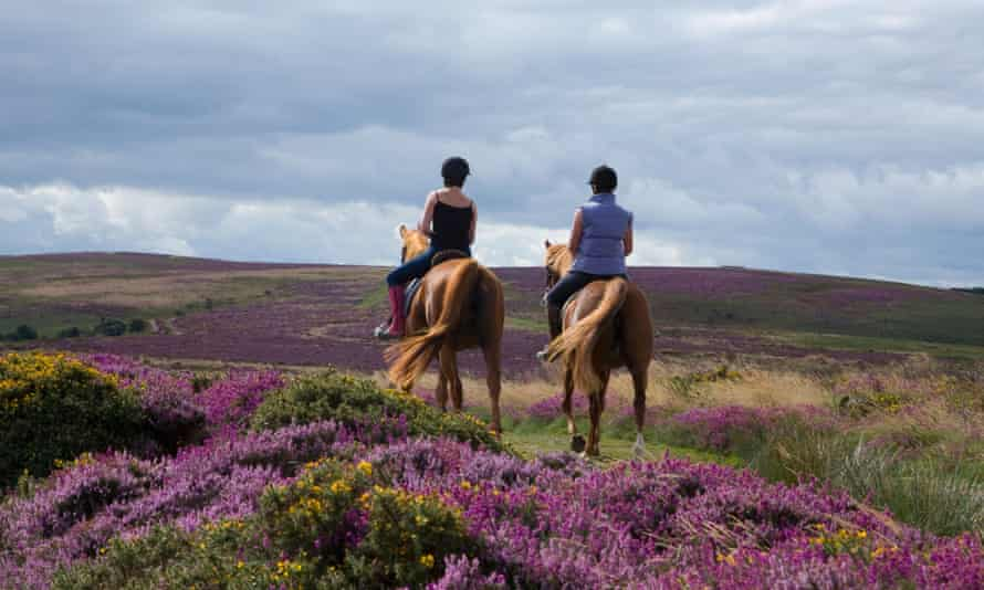 Live Better: Why I love horse riding