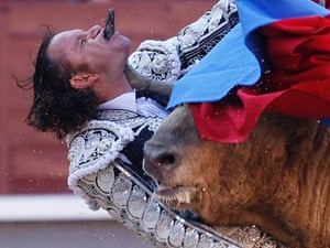 Spanish Bullfighter Julio Aparicio is gored by a bull during a bulfight of the San Isidro Feria at the Las Ventas bullring in Madrid, 2011.