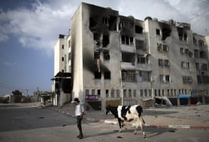 20 Photos: A Palestinian man leads a cow in front of destroyed buildings in Beit Lahia