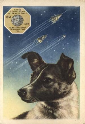 Laike Postcard, USSR (1958)