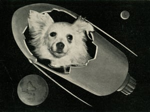 Kozyafka Postcard, Italy (c.1960). A postcard with an image of Kozyavka.