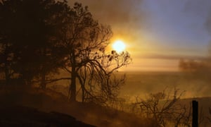 A photo made available 15 May 2014 shows smoldering trees obscuring the sunset atop a hill in San Marcos, San Diego county, California, USA, 14 May 2014. A spate of wildfires in southern California burned at least 30 homes and even forced the evacuation of the San Onofre nuclear power plant, authorities said 14 May.