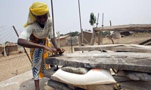a woman using firewood dryer to dry cassava flour