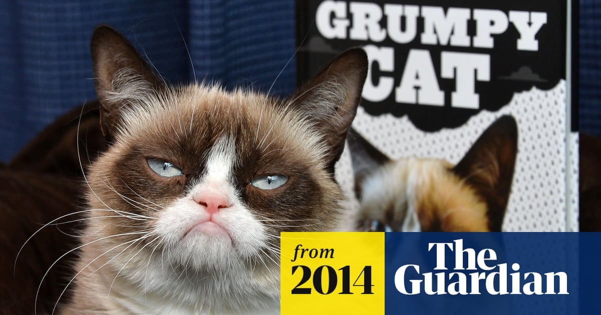 The ultimate internet glossary: from 4chan to Zynga | Technology | The Guardian