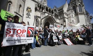 """File photo dated 21/08/14 of protesters from The Badger Trust who have won permission to appeal a ruling over the legality of the latest badger culls, which started on Monday, September 10, 2014. Last month it lost an 11th-hour High Court legal battle arising from the Government go-ahead for a second year of """"controlled shooting"""" of free-roaming badgers in Gloucestershire and Somerset."""