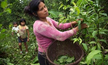Ecuador woman