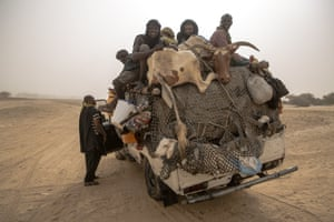 Goods and livestock are transported by truck to Timbuktu from the river Niger.